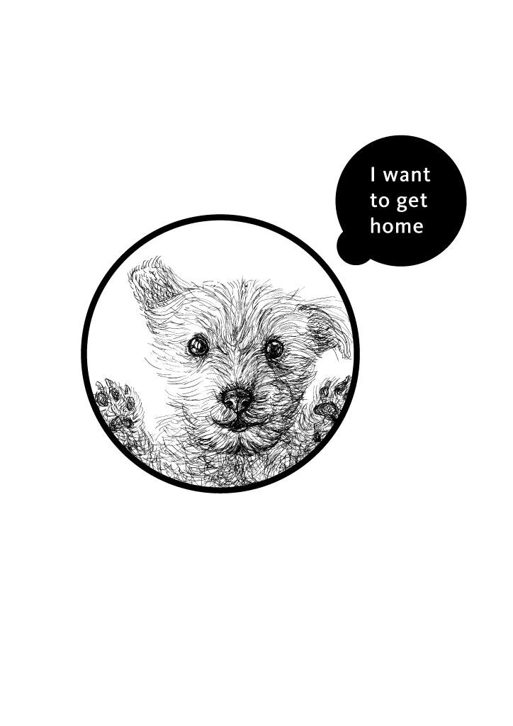 Ai_logo_dog_2