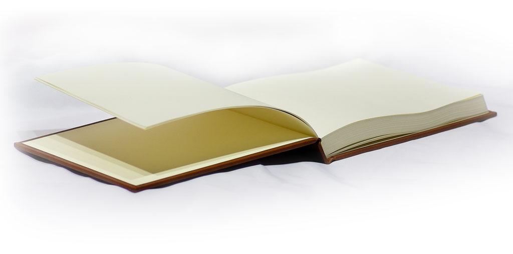 book_bush_2