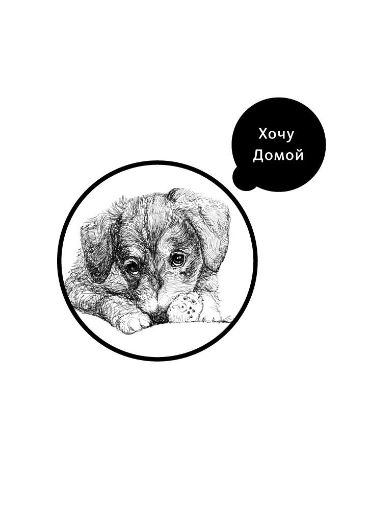 logo_dog_1